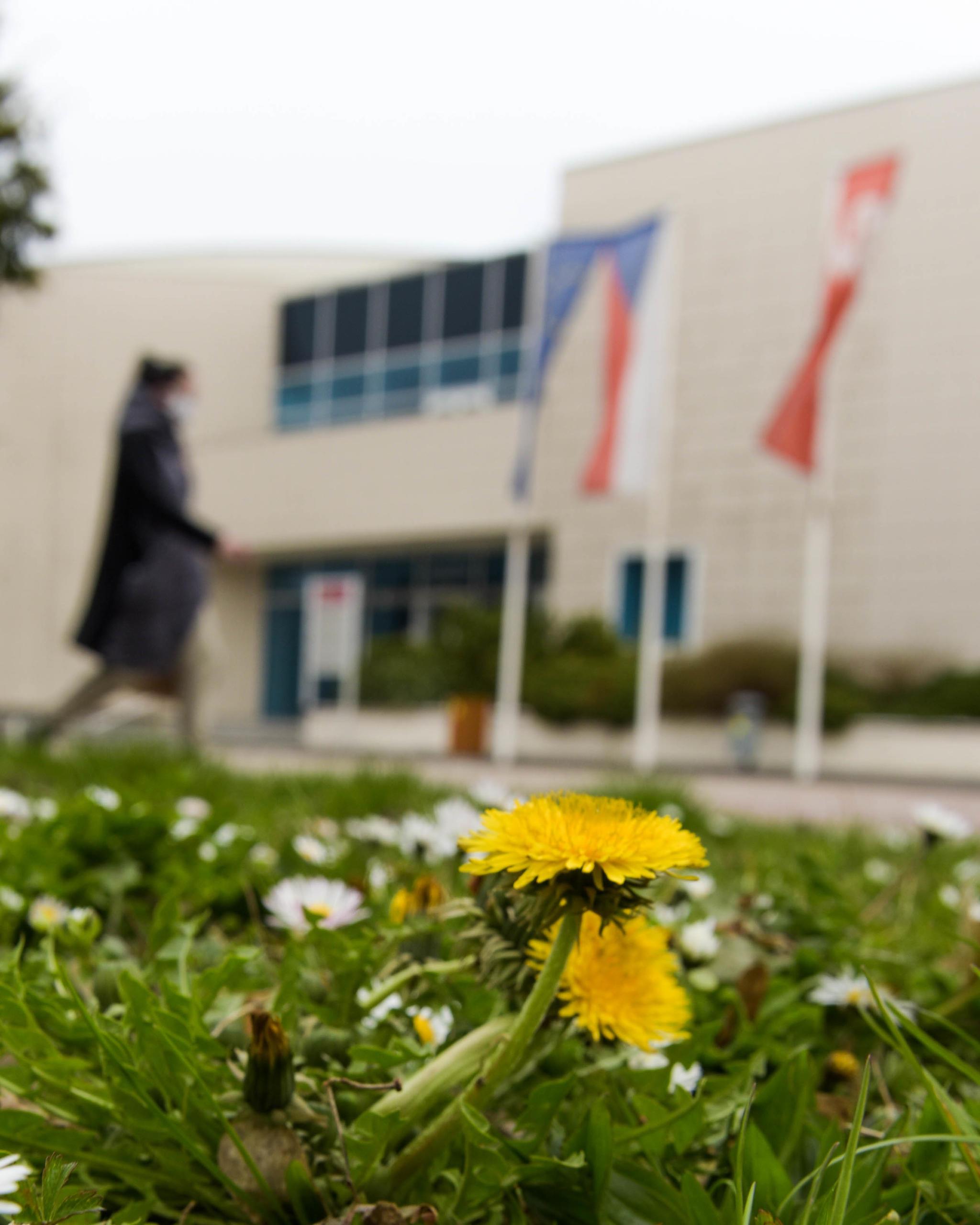 Fotogalerie: Univerzita v čase koronaviru