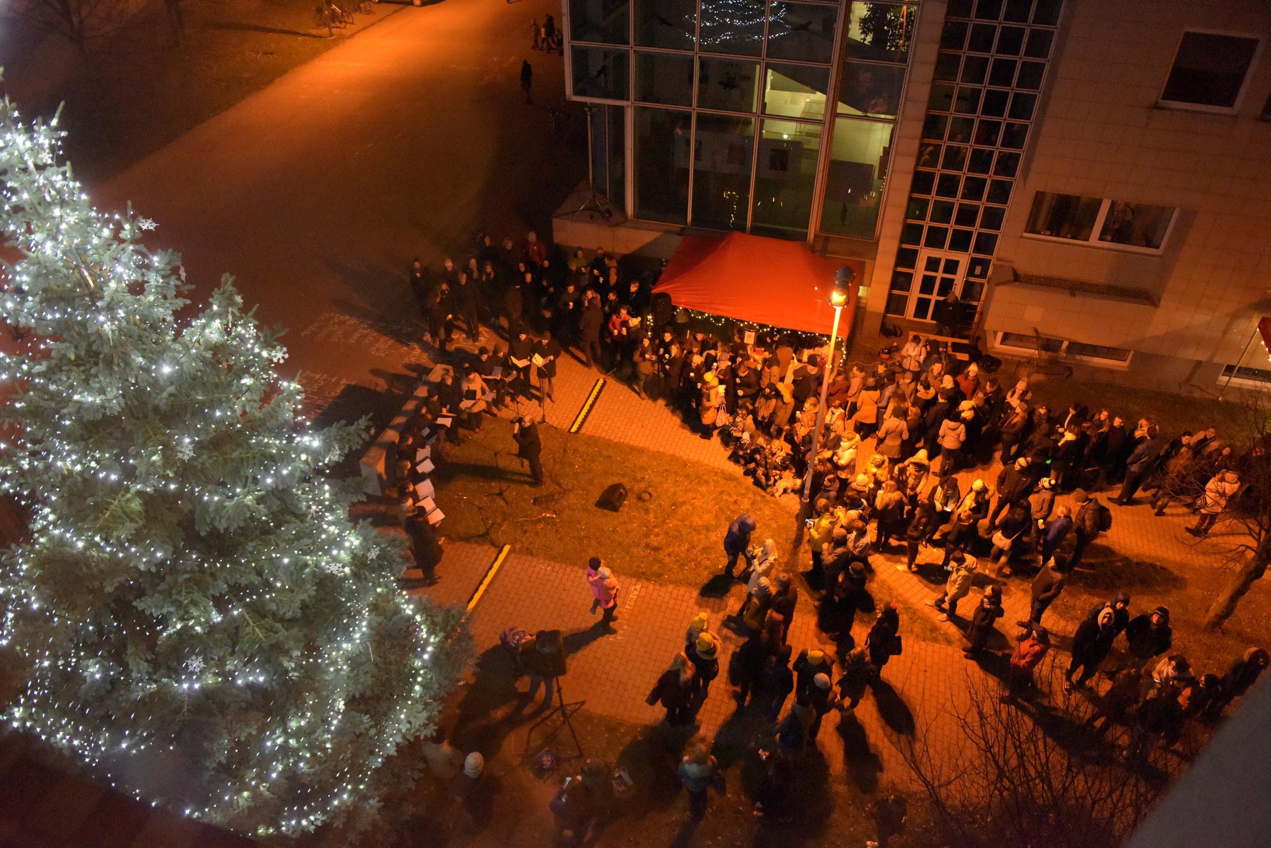 Rozzářená světýlka i dětské tváře, rozsvítili jsme univerzitní strom